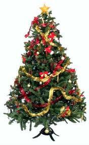 Yeni yıl, Çam ağacı